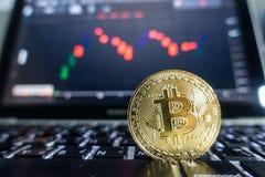 举行在膝上型计算机前面的商人金黄Bitcoin有股票的 库存照片