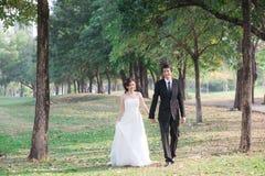 举行手和步行的新娘和新郎在庭院里 免版税图库摄影