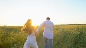 举行手和赛跑的愉快的年轻夫妇通过麦田在夏天日落,获得乐趣户外 乡下 影视素材