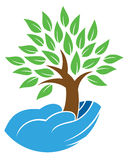 举行树商标的手 免版税库存图片