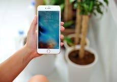 举行苹果计算机iPhone 6S加上的妇女 免版税库存图片
