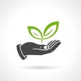 举行绿色的手离开生态传染媒介标志 库存照片