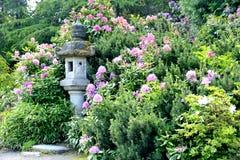 久保田庭院,西雅图 库存照片