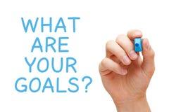 什么是您的目标 图库摄影