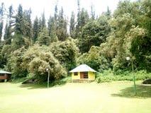 之家在公园 库存照片