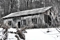 之家在森林里 库存照片