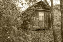 之家在森林 免版税库存照片
