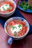 乌克兰传统罗宋汤 在蓝色碗的俄国素食红色汤在红色木背景 罗宋汤,博尔希用甜菜 两 图库摄影
