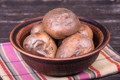乌克兰全国盘是被烘烤的土豆 免版税库存图片