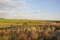 乌克兰农厂天,美好的领域风景 图库摄影