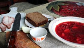 乌克兰午餐 免版税库存图片