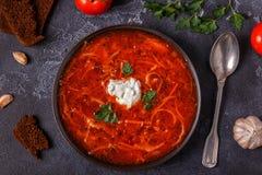 乌克兰和俄国传统红色汤-罗宋汤 免版税库存照片