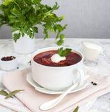 乌克兰和俄国全国红色汤罗宋汤 免版税库存图片