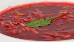 乌克兰和俄国全国食物-红色甜菜汤罗宋汤用牛肉 摩尔多瓦的汤 关闭 甜菜根奶油板材  库存图片
