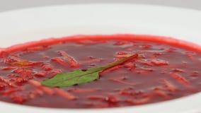 乌克兰和俄国全国食物-红色甜菜汤罗宋汤用牛肉 摩尔多瓦的汤 关闭 甜菜根奶油板材  免版税库存照片