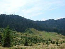 乌克兰喀尔巴汗的Marmaros的山脉在Transcarpathian地区的拉希夫附近镇的  乌克兰 08 库存图片