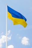 乌克兰的旗子 免版税库存照片