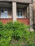 乌克兰的植物群 风景 在住宅砖房子附近的莓植物灌木有一个棕色阳台的 在阳台有 免版税库存照片