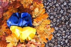 乌克兰的蓝色和黄旗 免版税库存图片
