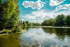 乌克兰的风景 免版税库存图片
