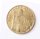乌克兰金钱 库存图片