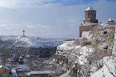 乌克兰, Kamenets-Podilsky 分支冷杉雪树型视图冬天 免版税库存图片