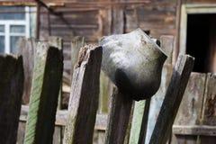 乌克兰 切尔诺贝利禁区 - 2016年 03 19 垂悬在篱芭的老铝罐 免版税库存图片