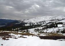 乌克兰滑雪胜地Dragobrat倾斜在10月 库存图片
