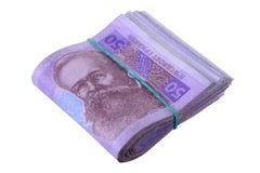 乌克兰hryvnia货币 免版税库存照片