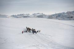 乌兰Buh草原在冬天 库存图片