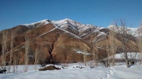 乌兹别克斯坦, 免版税库存照片