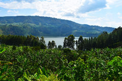 乌干达 免版税库存照片