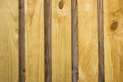 乌木或渐近的委员会黄色,干燥,背景 图库摄影