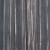 乌木木头纹理 库存图片