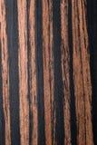 乌木表面饰板 免版税图库摄影