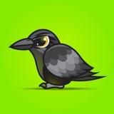 乌鸦动画片 库存图片
