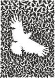 从乌鸦群的乌鸦  免版税库存照片