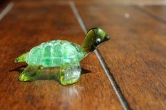乌龟准备好种族 免版税库存图片