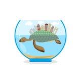 乌龟壳的微型城市  在水族馆的微生态系 Sk 免版税库存照片