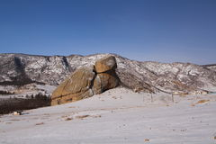 乌龟岩石在蒙古 图库摄影
