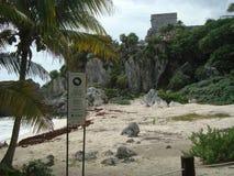 乌龟海滩在Tulum墨西哥 免版税库存图片