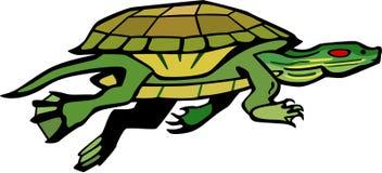 乌龟游泳 皇族释放例证
