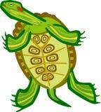 乌龟腹部 库存例证