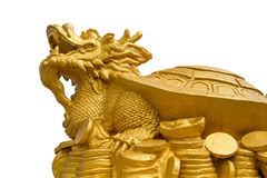 乌龟龙 免版税库存照片
