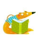 乐趣五颜六色的狐狸读书哄骗书 向量例证