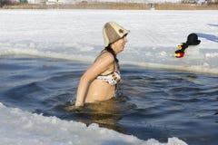 乐趣冰游泳 免版税库存图片
