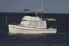 乐趣划船 免版税库存图片