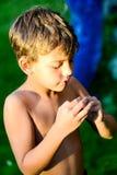 乐趣在庭院里在夏天 免版税库存照片