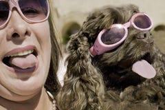 乐趣在阳光下在丑恶的狗展示 库存图片