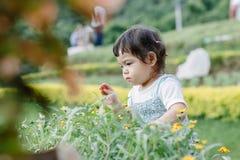 乐趣的小女孩在庭院里 免版税库存照片